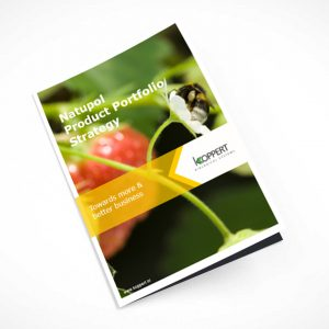 Booklet with graphic design and illustration for a corporate sustainability strategy